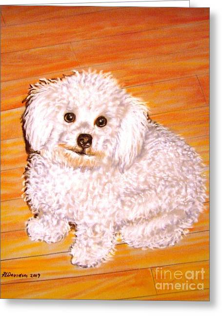 Poodle Greeting Card by Patricia L Davidson