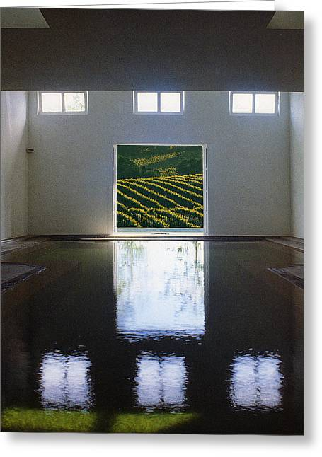Pool And Vineyard Greeting Card by Francine Gourguechon