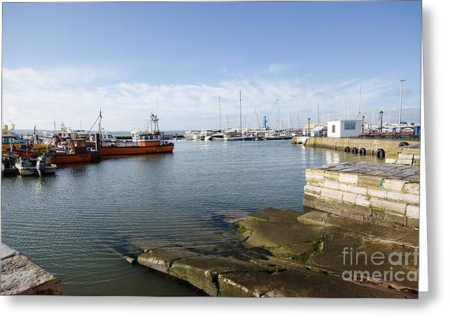 Poole Harbour Greeting Card by Nichola Denny