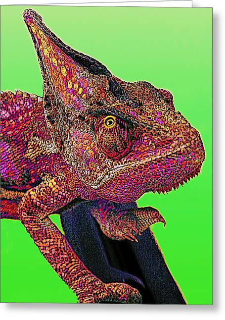 Pop Art Chameleon Greeting Card by L S Keely