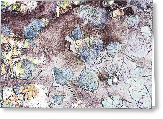 Poplar Leaf Path Greeting Card by Aliceann Carlton