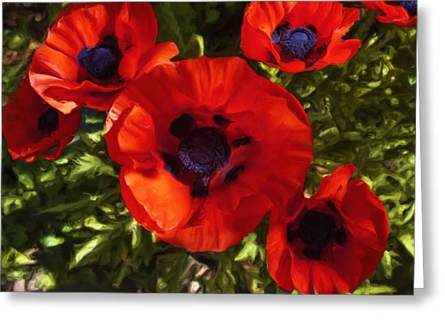 Greeting Card featuring the painting Poppies 1 by Lou  Novick