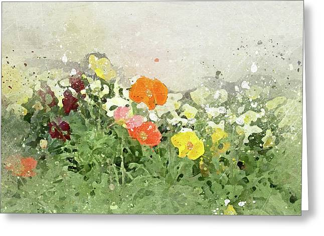 Poppies-2-c Greeting Card
