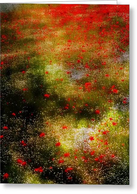 Poppies For Remembrance Greeting Card