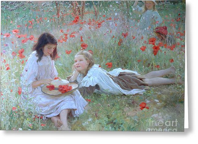 Poppies Greeting Card by Frederick Stead