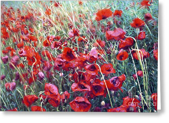 Poppies In Motion Greeting Card by Jutta Maria Pusl