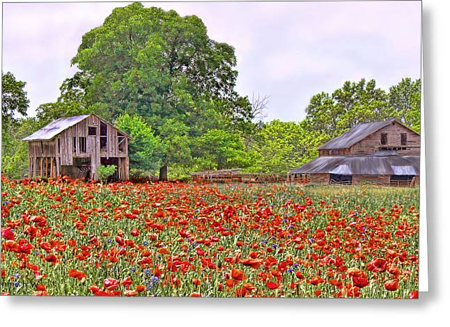 Poppies On The Farm Greeting Card