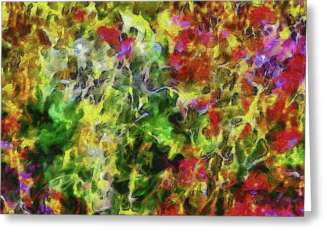 Poppy Abstract 2 Greeting Card by Dorothy Berry-Lound