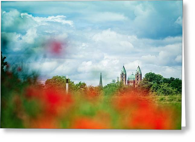Poppy Field And Speyer Cathedral Greeting Card by Nailia Schwarz