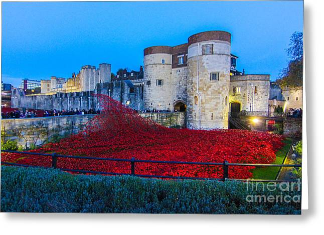 Poppy Flowers Tower Of London Greeting Card