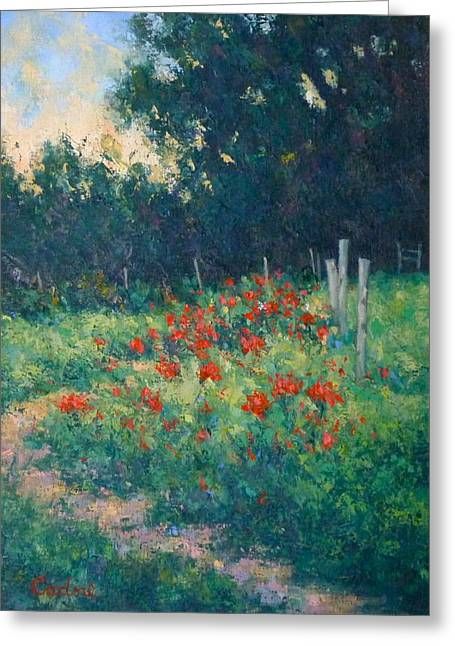 Poppy Garden Greeting Card by Gene Cadore