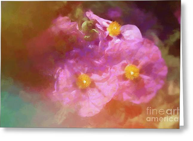 Poppy Impressions Greeting Card by Elaine Teague