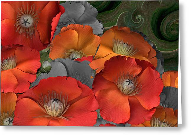 Poppy Greeting Card by Stan Bowman