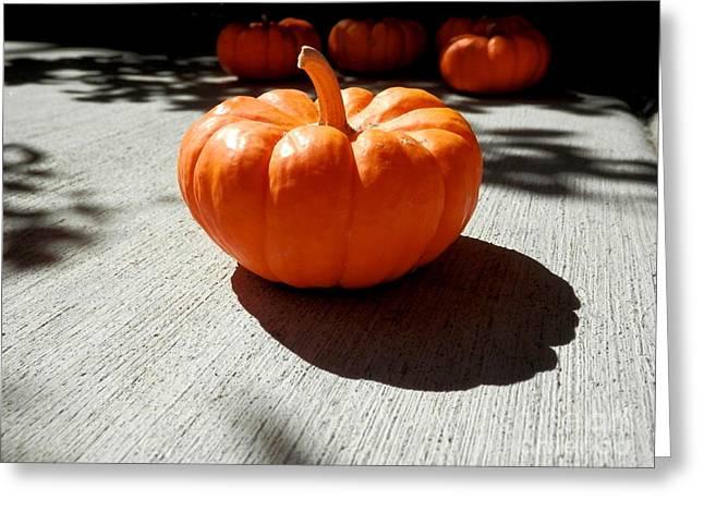 Poppy Pumpkin Greeting Card