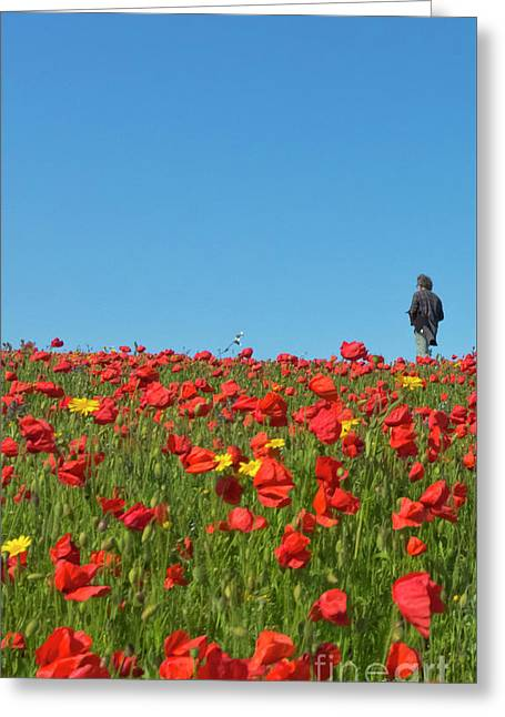 Poppy Triptych Panel 1 Greeting Card by Terri Waters