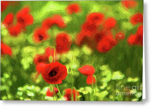 Poppy Vi  Greeting Card by Tamme Maurer