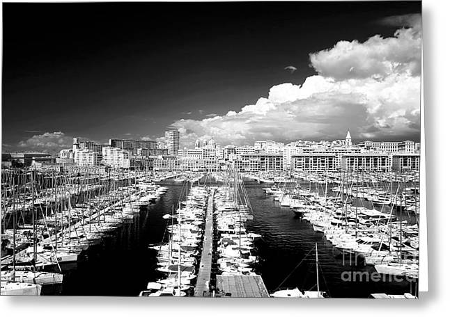 Port Lines Greeting Card