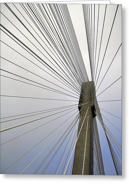Port Mann Bridge Greeting Card by Pelo Blanco Photo