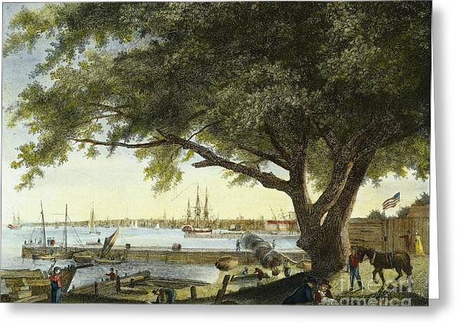 Port Of Philadelphia, 1800 Greeting Card by Granger