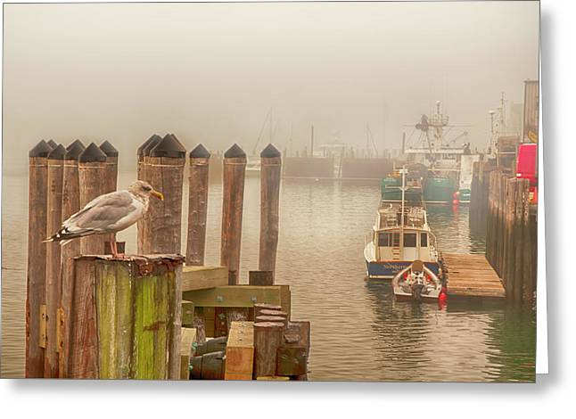 Portland Harbor Morning Greeting Card