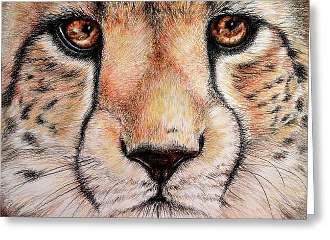Portrait Of A Cheetah Greeting Card by Heidi Kriel