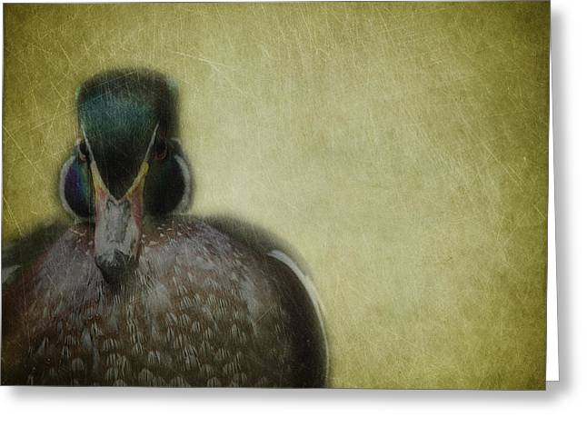 Portrait Of A Duck Greeting Card by Rebecca Cozart