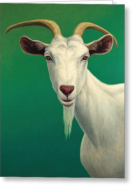 White Greeting Cards - Portrait of a Goat Greeting Card by James W Johnson