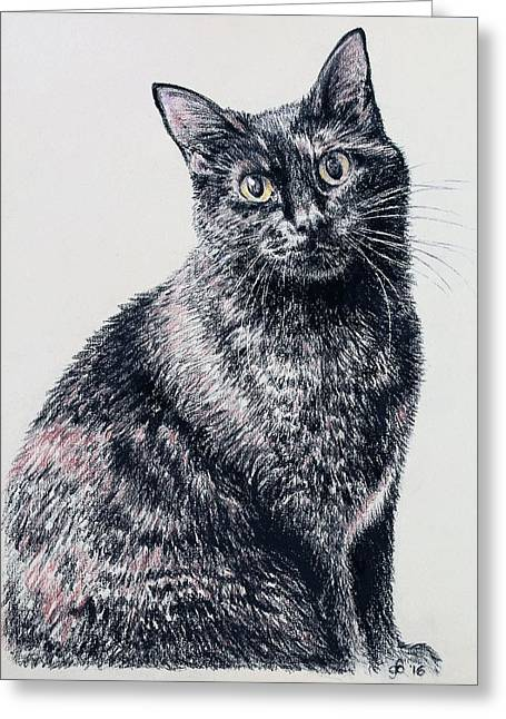 Portrait Of A Good Looking Cat Greeting Card
