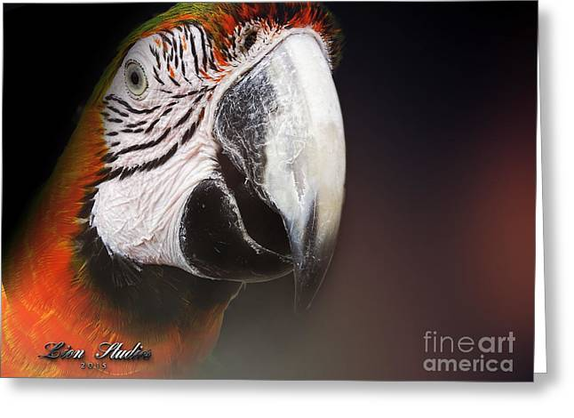 Portrait Of A Parrot Greeting Card