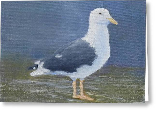 Portrait Of A Seagull Greeting Card