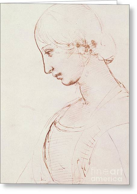 Portrait Of A Young Woman  Greeting Card by Raphael