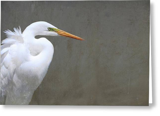 Portrait Of An Egret Rectangle Greeting Card