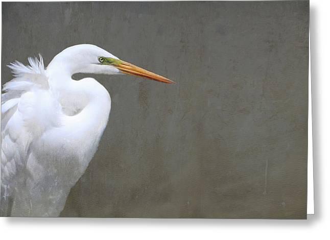 Portrait Of An Egret Rectangle Greeting Card by Karen Lynch