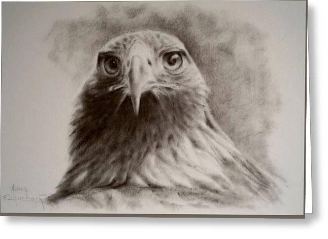 Portrait Of Eagle Greeting Card by Anna Franceova