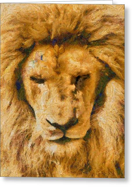 Greeting Card featuring the photograph Portrait Of Lion by Scott Carruthers