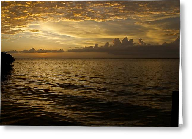 Post Sunset Bliss Greeting Card by Christin Walton