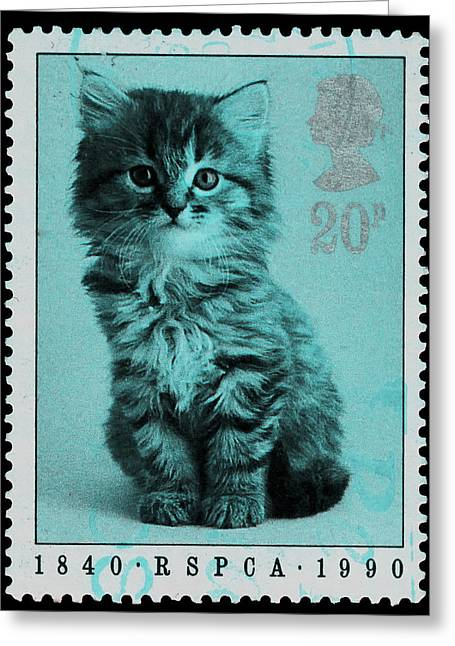 Postage Stamp Blue Kitten Greeting Card by Alexey Bazhan