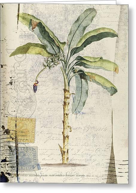 Postcard Banana Plant Botanical Greeting Card