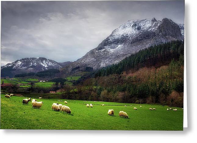 Postcard From The Basque Country II Greeting Card by Mikel Martinez de Osaba