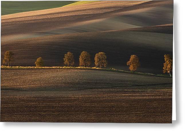 Postcards From Moravia Greeting Card by Jaroslaw Blaminsky