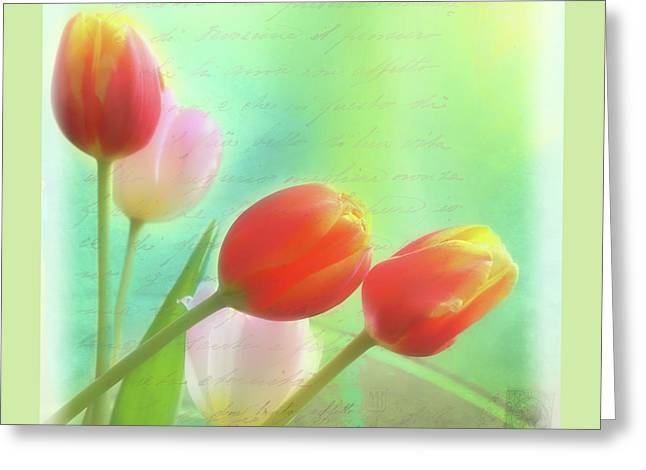 Postcards From The Edge Greeting Card