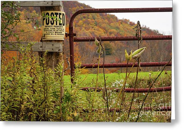 Posted And Gate Greeting Card by Kathleen K Parker
