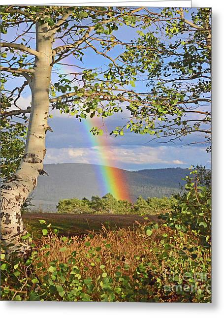 Pot Of Gold Rainbow Greeting Card by George E Richards