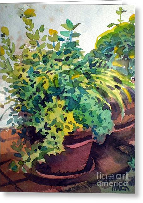 Potted Herbs Greeting Card by Donald Maier