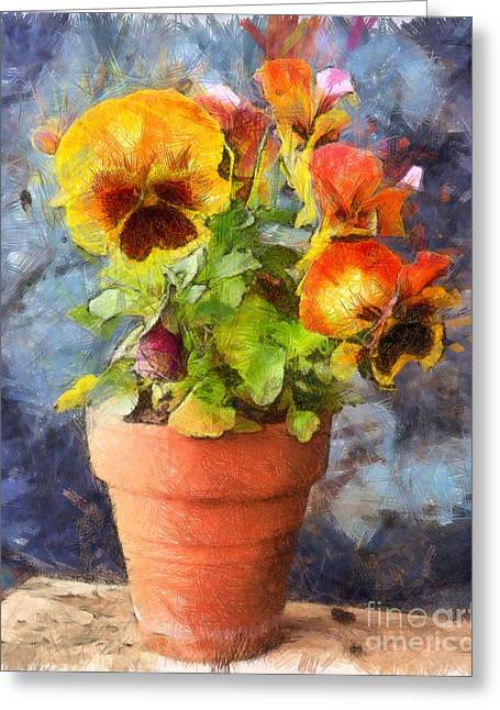 Potted Pansy Pencil Greeting Card by Edward Fielding