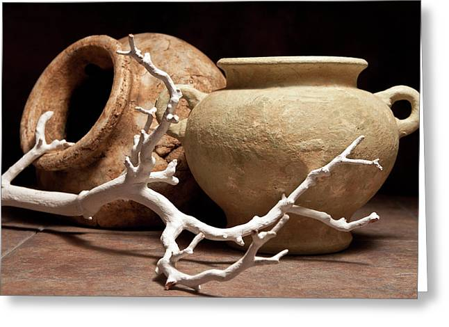 Pottery With Branch II Greeting Card by Tom Mc Nemar