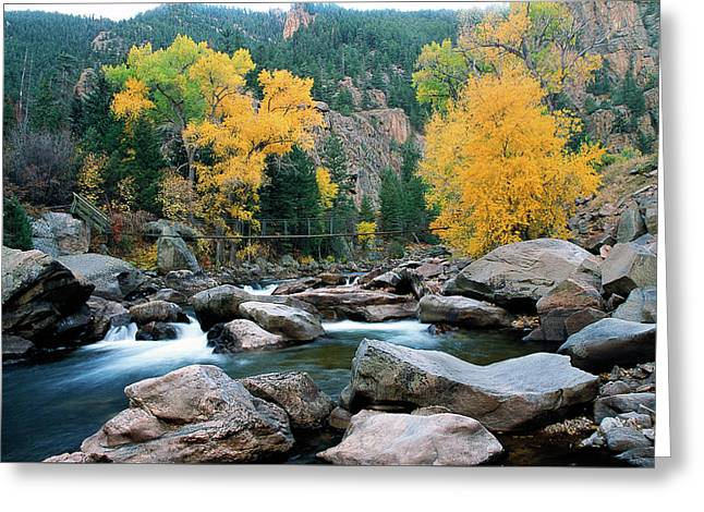 Poudre Gold Greeting Card