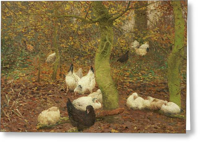Poultry In A Wood Greeting Card by Emile Claus