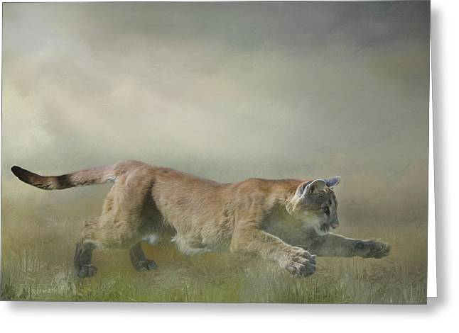 Pouncing Puma Greeting Card