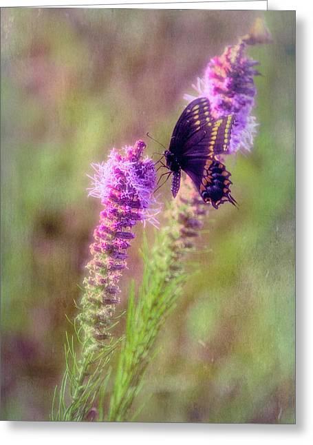 Prairie Butterfly Greeting Card